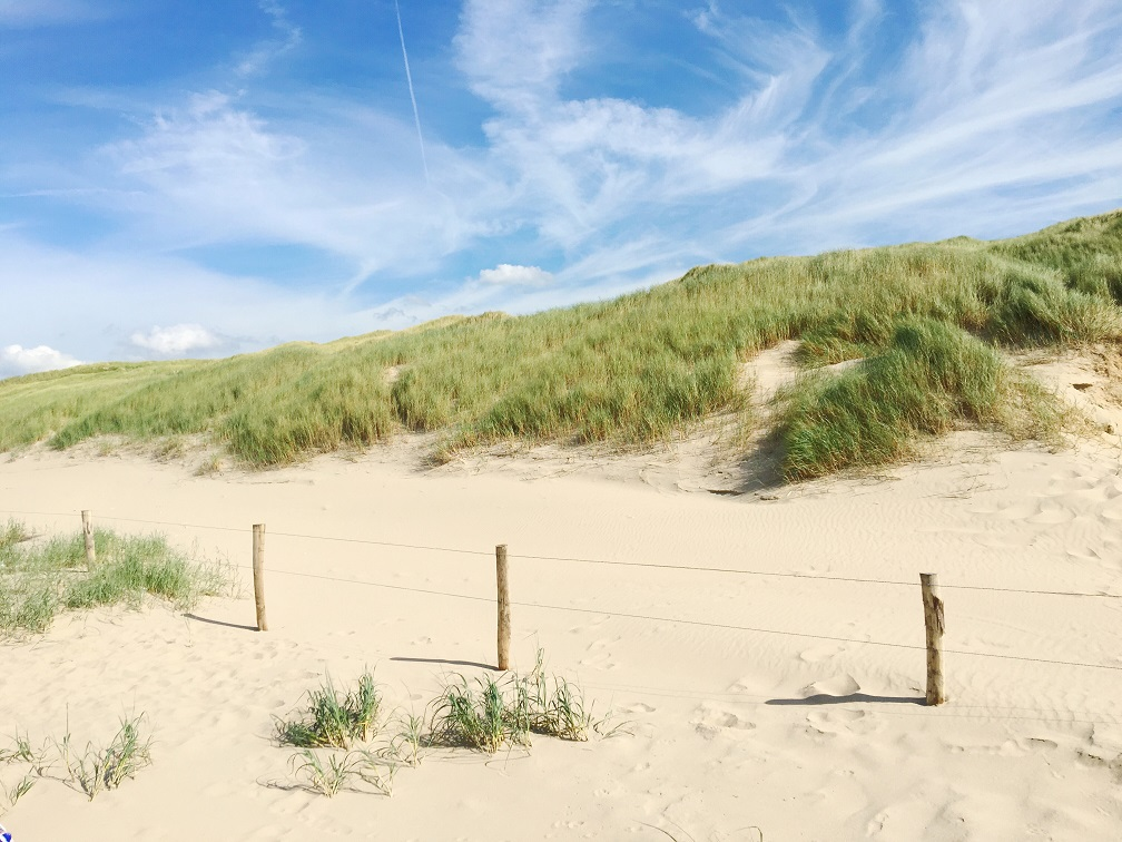 off-the-beaten-path-in-castricum-netherlands-11