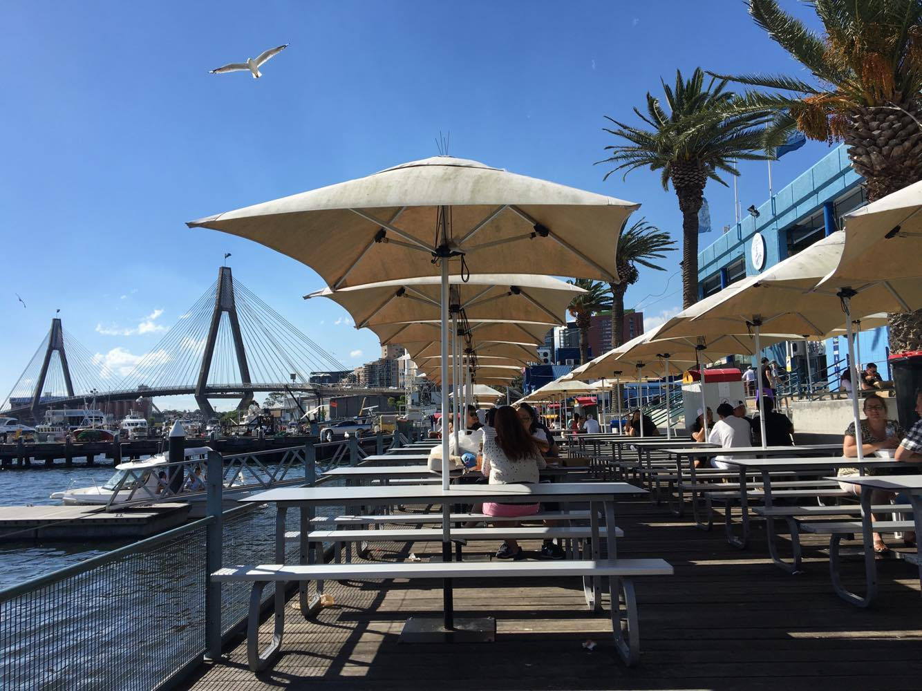 Patio outside Sydney's Fish Market