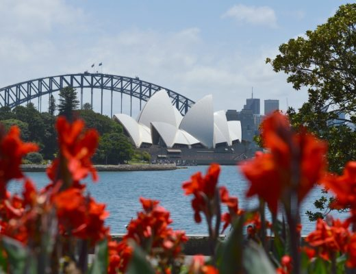View of the Sydney Opera House from the Royal Botanic Garden