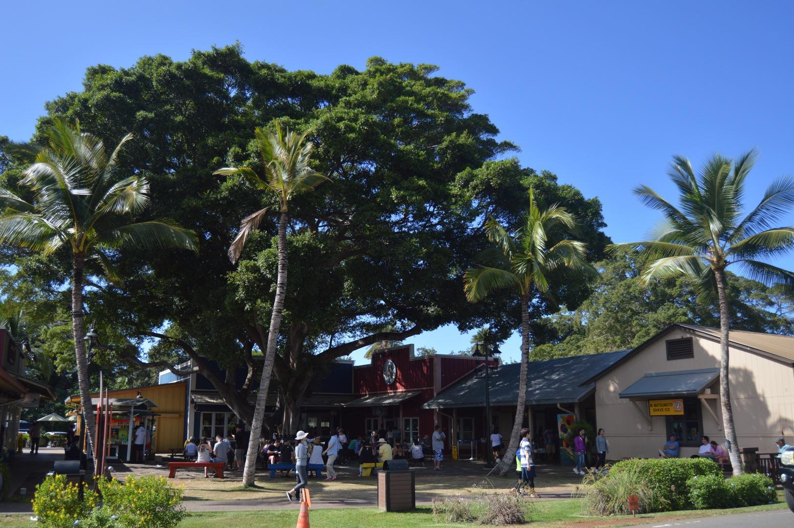 North Shore Marketplace in Oahu, Hawaii